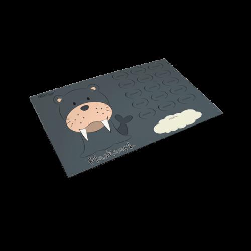 Plaskaart Zeeleeuw